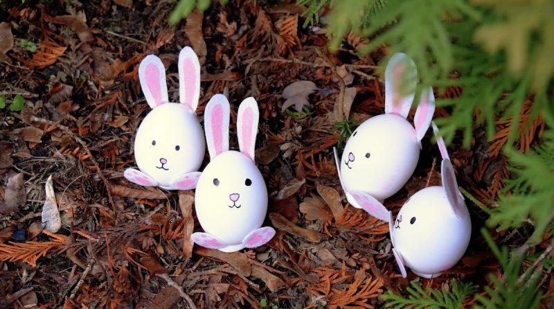 uova sode a forma di coniglio pasquale