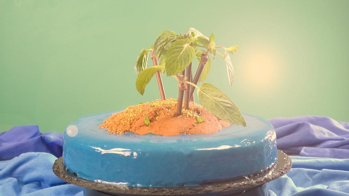 Ricetta torta isola del gusto