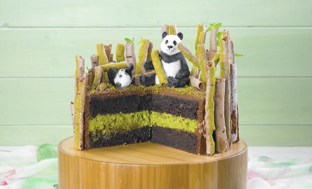 Torta al cioccolato con crema di pistacchio e canne di bambu