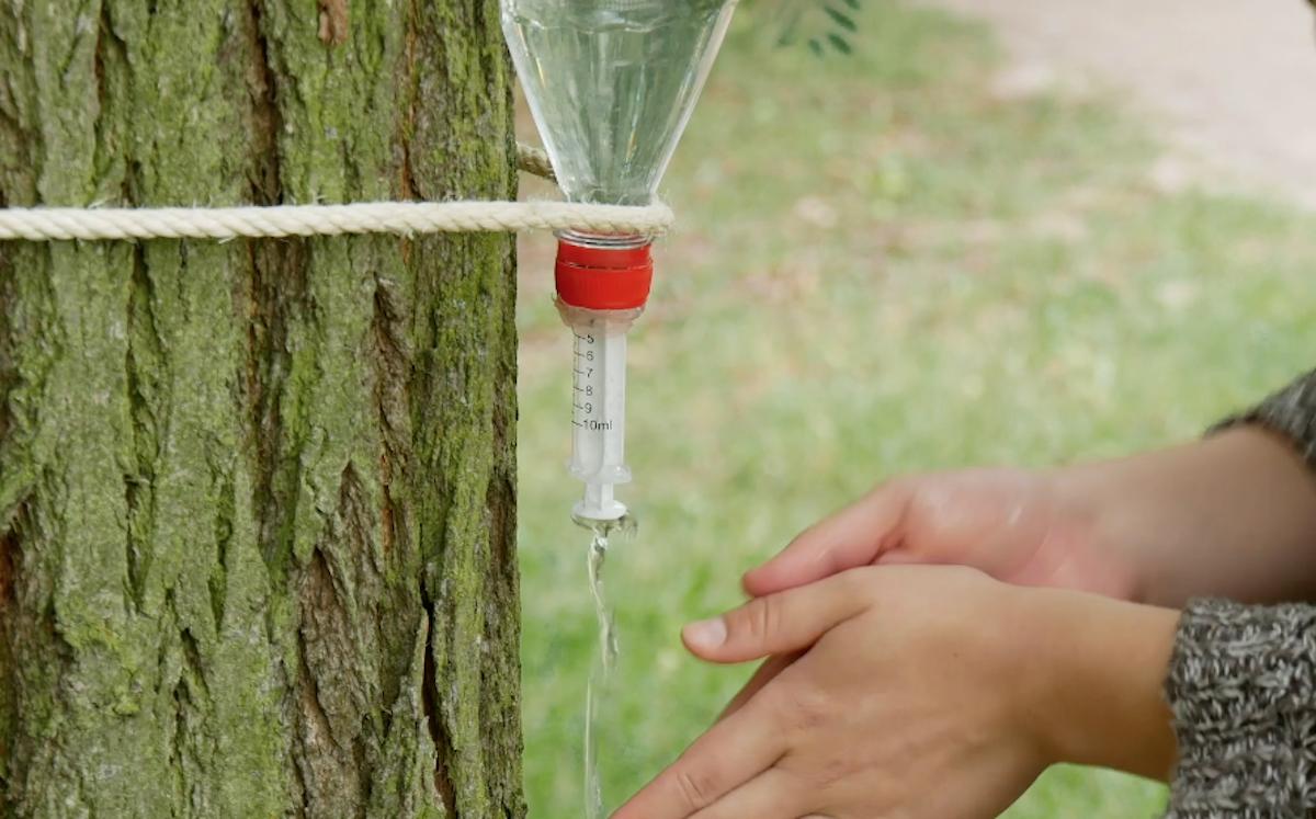 Dispenser acqua con bottiglia di plastica