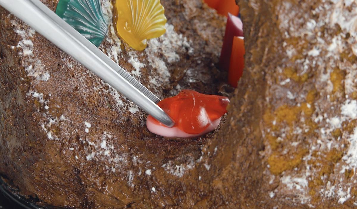 Caramelle gommose sulla barriera corallina