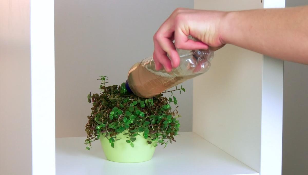 Fertilizzante naturale in bottiglietta d'acqua