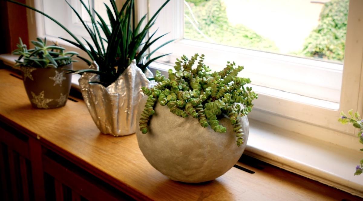 Vaso per piante grasse in cemento
