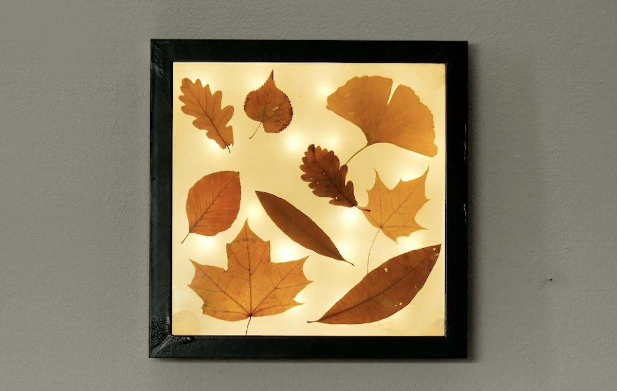Originale cornice quadro luminosa fai da te con le foglie autunnali