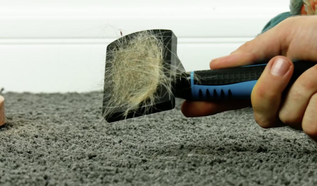 Tappeto pulito con la spazzola per peli