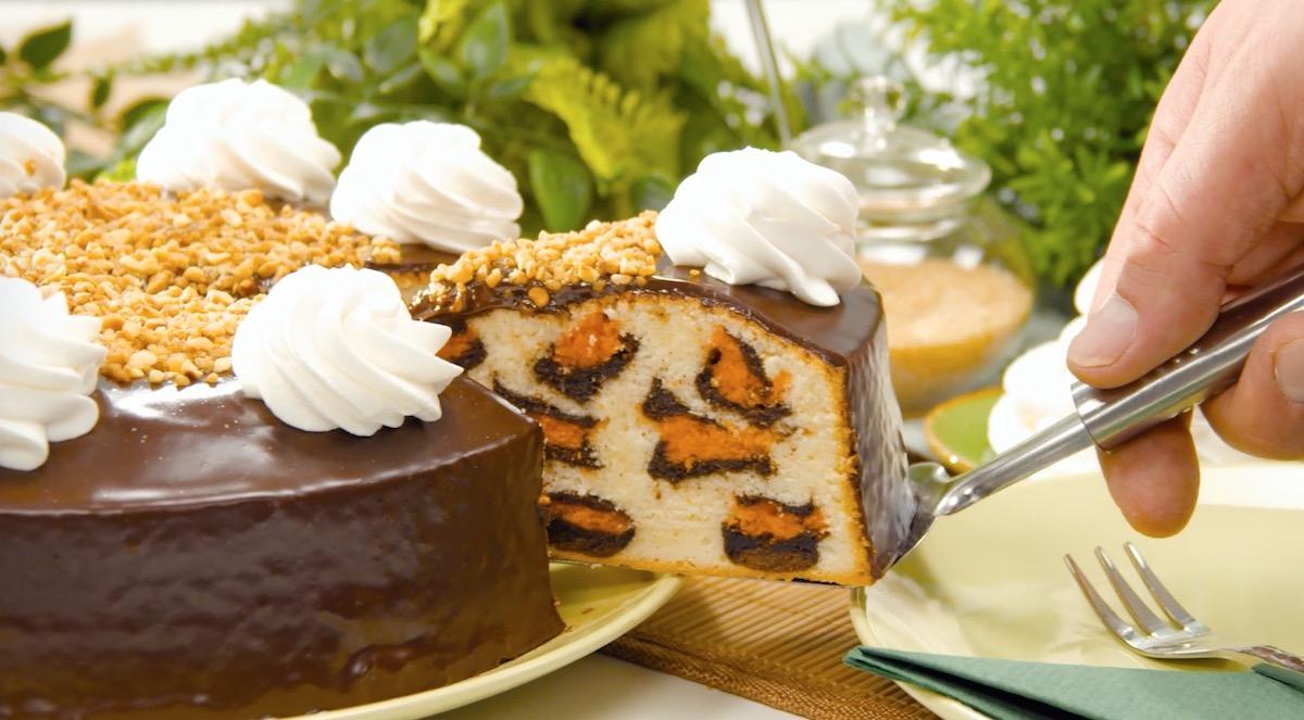 Torta leopardata con nocciole tritate e glassa al cioccolato